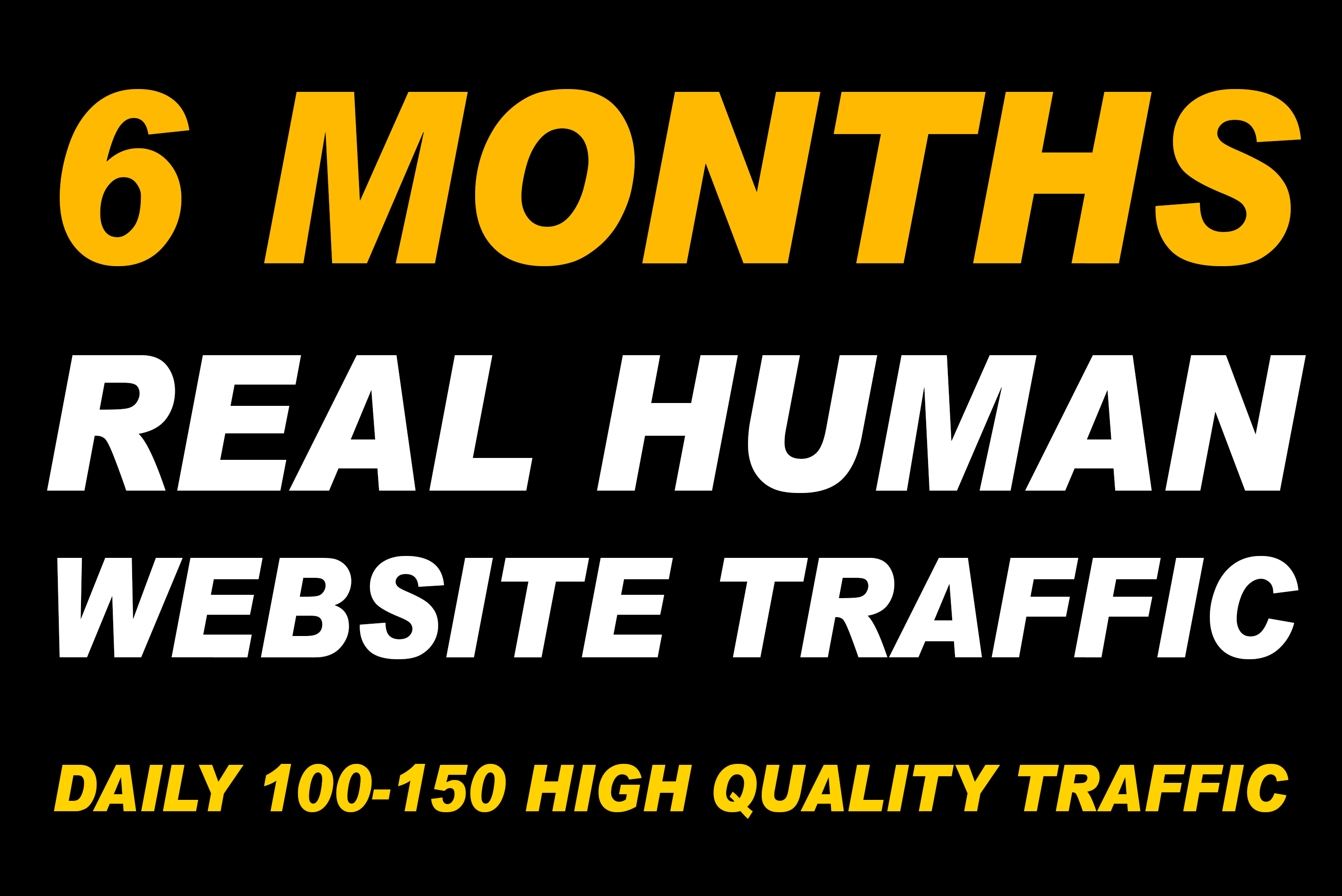 I will send 6 Months Real Human Website Traffic