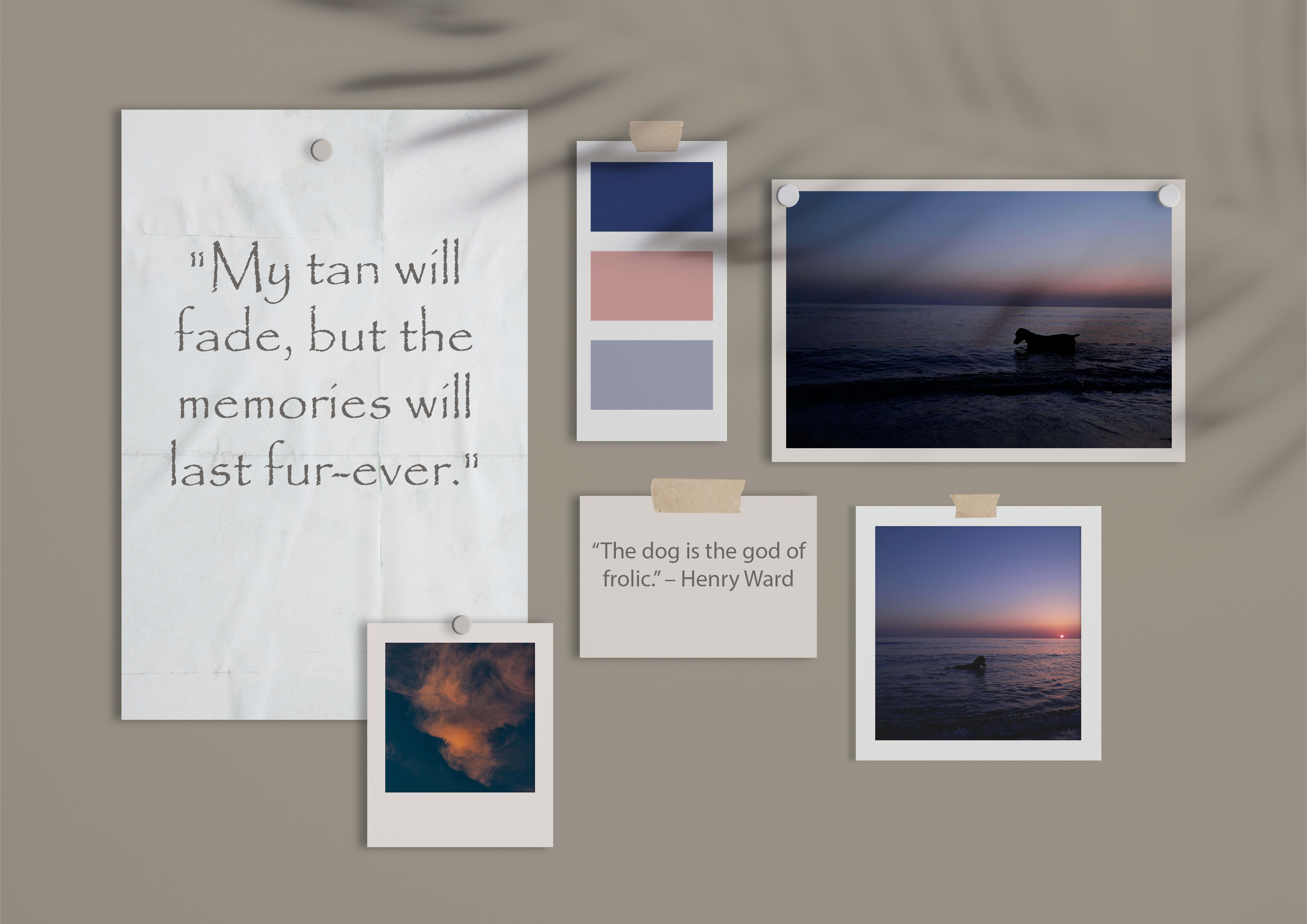 I will create your brand color palette