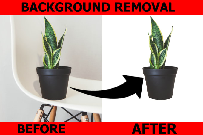 I will cut out 10 image background or convert white or transparent background