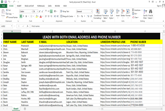 I will do B2B Lead Generation and Email list building from any niche and location
