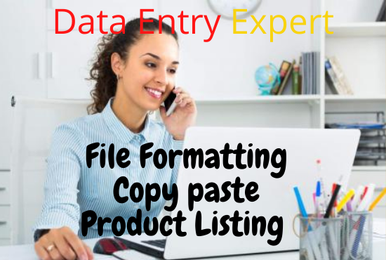 I will do Data Entry work with do Virtual Assistant