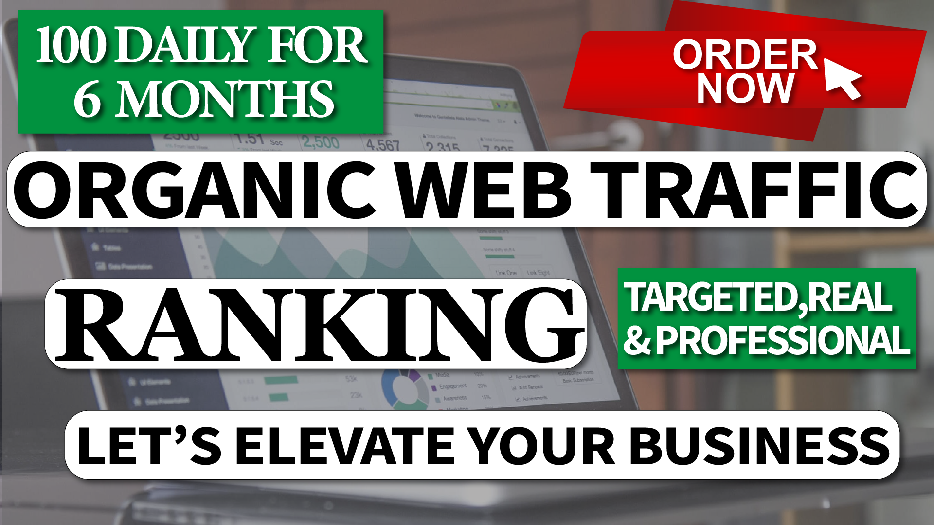 Real Organic Web Traffic From Worldwide for 6 Month to your Website