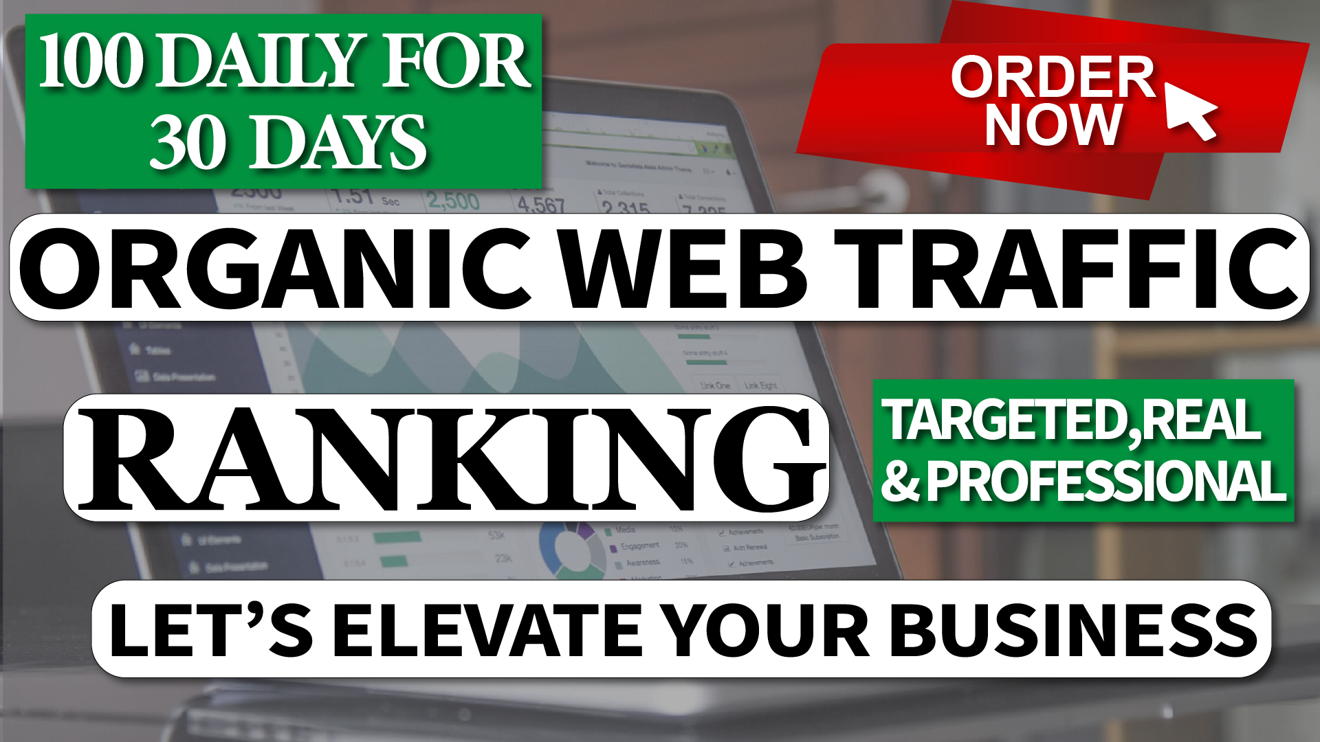 Real Organic Traffic for 30 Days Non Stop