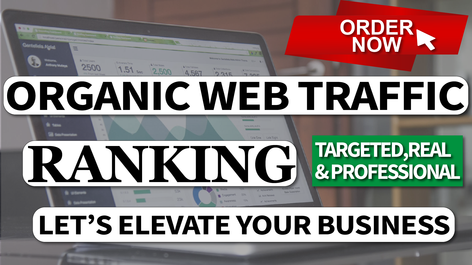Real Organic Human Traffic for 1 Month to Your Website Through SMM