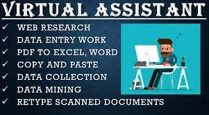 I will do professional Virtual Assistant, Web Research, Typing, Data Entry