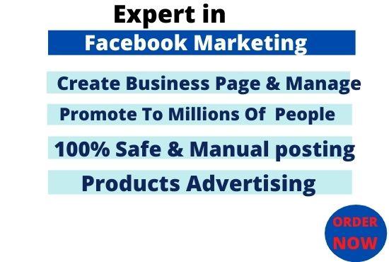 Professional Social Media Marketer