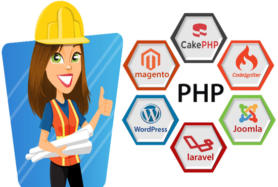 i'll install any PHP script on your web server