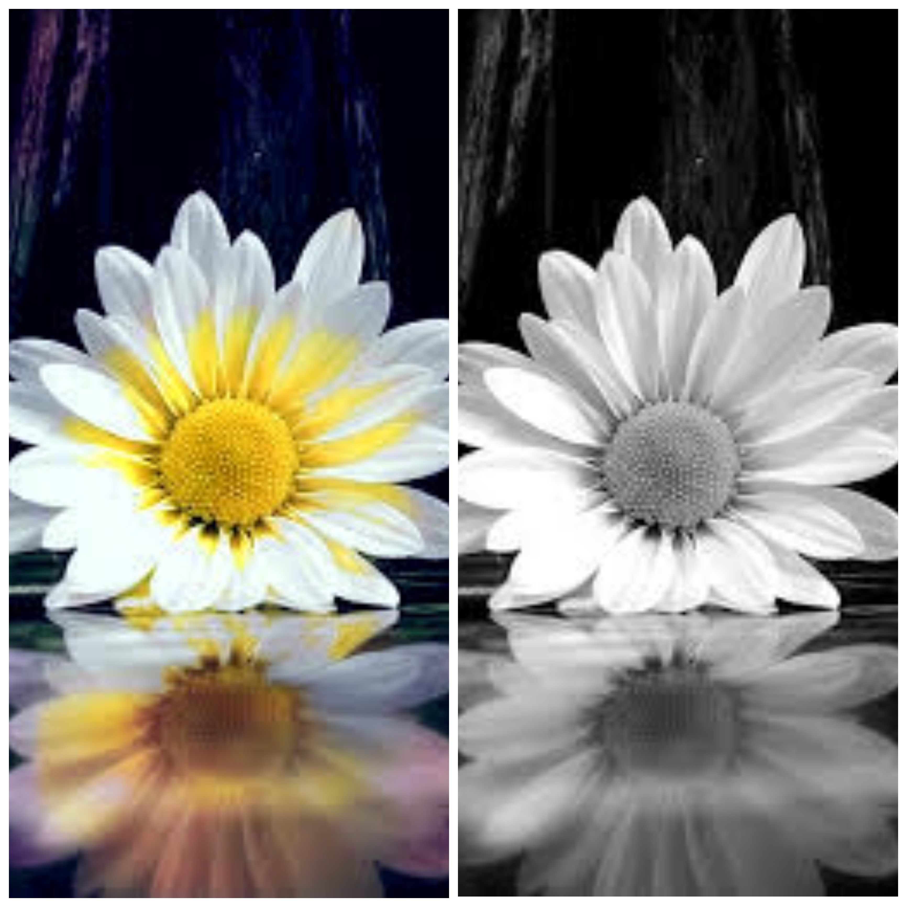 Colour pictures black and white