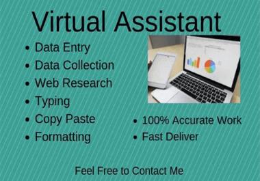 Data Entry,  Web Research,  Copy Paste