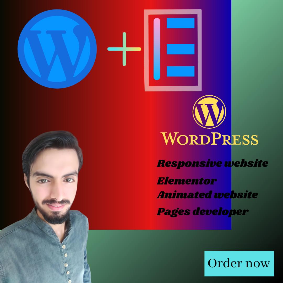 I will design wordpress responsive website,  design,  plgins & page developer
