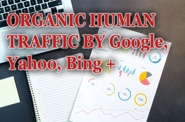 5000 Real Human Traffic daily for 10 days - Big promotion