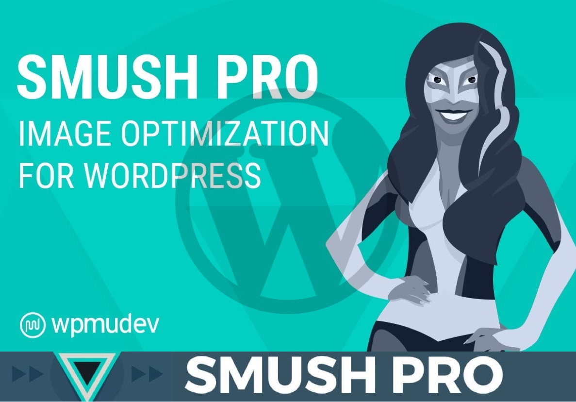 I will install Smush Pro plugin on your Wordpress Website