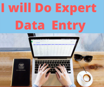 I will Do expert & Accurate data Entry, Copy Paste , typing & Converting work