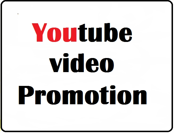 I will do YouTube video promotion very fast delivery