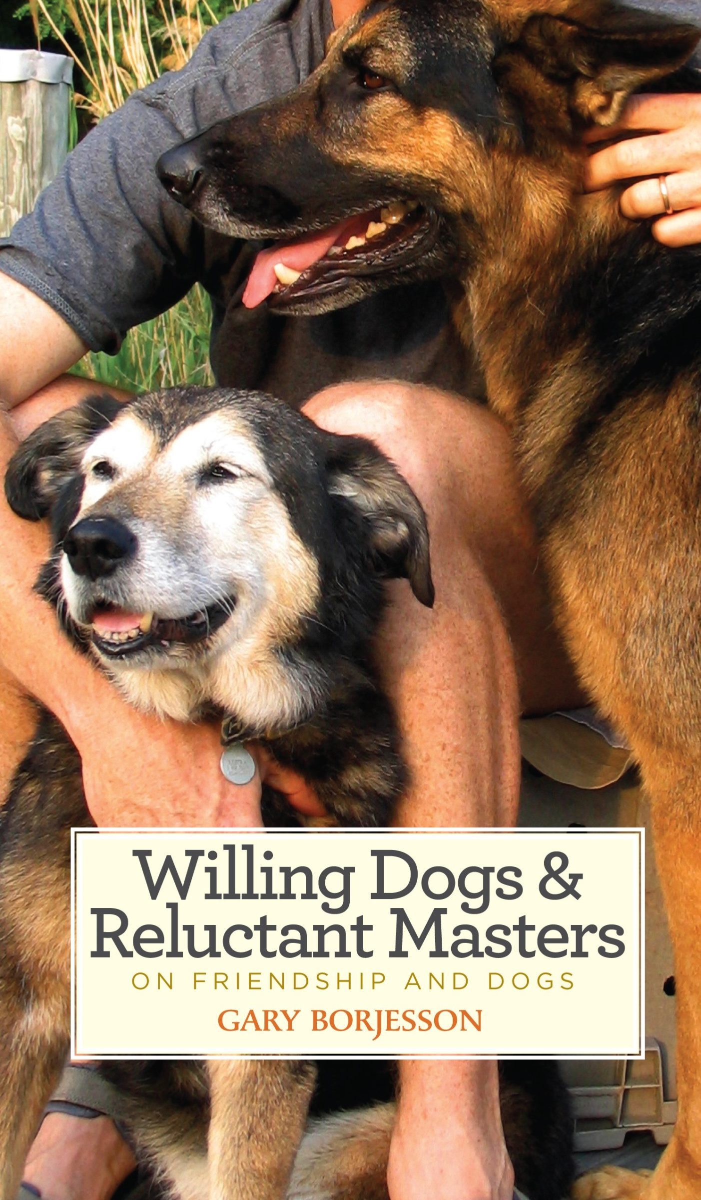 An article titled Things You Should Do With Your Dog While Filming COVID Has Over 500 Words