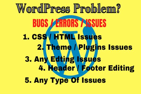 I will fix wordpress issues,  error,  bugs,  in 5 hours