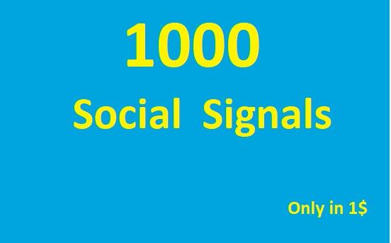 1000 SEO Social Media Traffic Signals Share