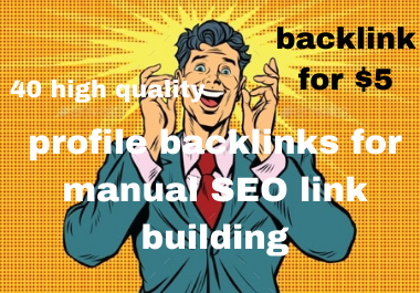 I will do 40 high quality profile backlinks for manual SEO link building