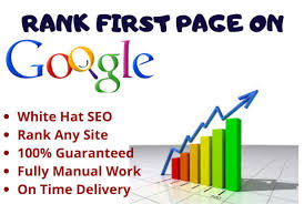 We push your site upon Google 1st Page with high Traffic Monthly Manual SEO Service