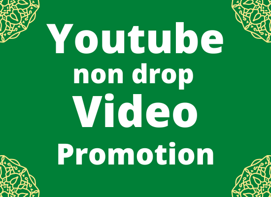 I will do professional YouTube video promotion fast delivery