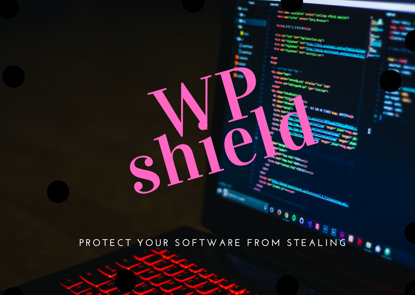 WP SHIELD, protect your software from stealing