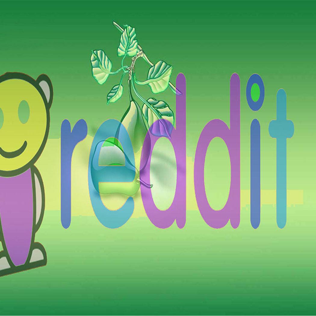 I will set up for you reddit facebook,  google and reddit