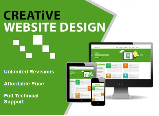 I will design and build a professional WordPress website