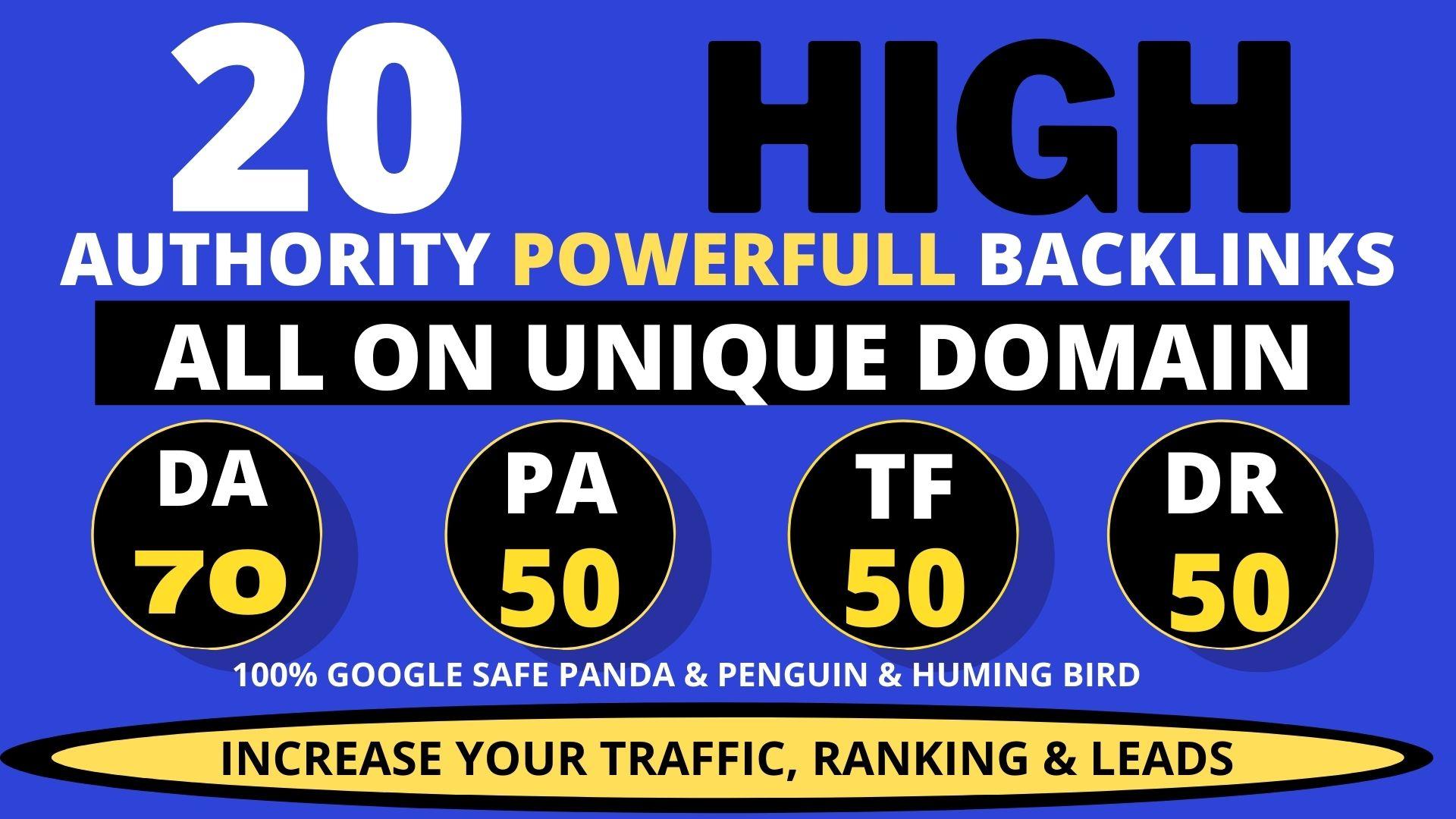 I will do 20+ Permanent DA 50 to 70 Dofollow Homepage PBN Backlinks service