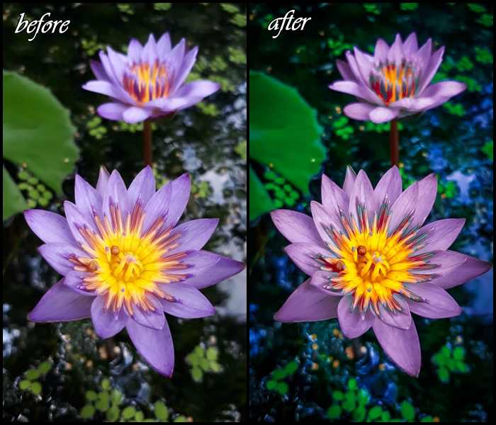 I will do 5 photo retouching and editing in 1 day