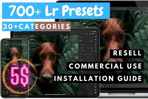 I will give you 700+ Lightroom preset pack in 30+ categories