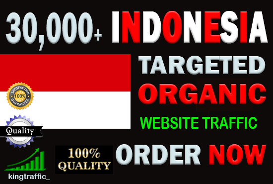 30,000 High Quality Indonesian web visitors real targeted Genuine web traffic from Indonesia