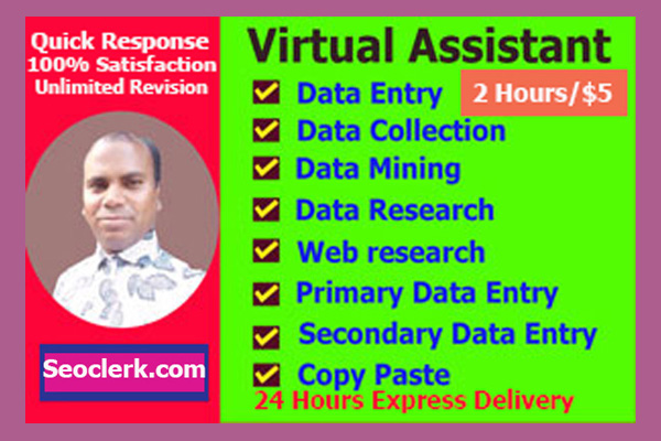 I will do virtual assistant,  data entry,  copy paste and other job