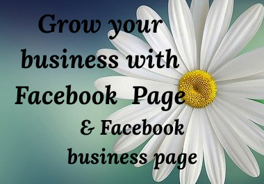 I will do Perfect Facebook Page & Facebook business page.