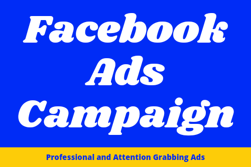 I will be your Facebook ads campaign-