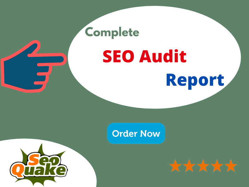 I Will do Complete SEO Audit for your website