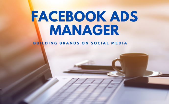 I'll be your Professional Facebook Ads Manager