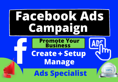 I will create your Facebook ads campaign to promote your business