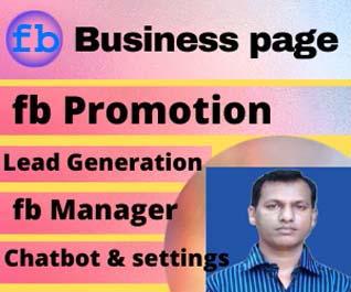 I will create,  optimize,  design and business page professionally