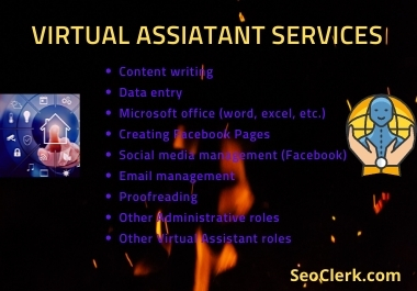 I will be your Virtual Assistant on Social Media