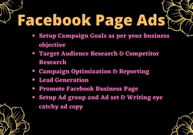 I will setup and can run your FB page ads campaigning and advertising
