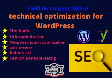 I will do on page SEO or technical optimization for Wordpress