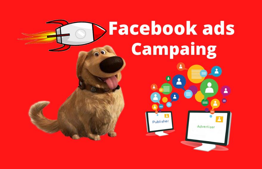 I will setup Facebook ads campaign.
