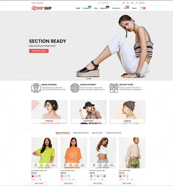 I will build your professional dropshipping shopify store