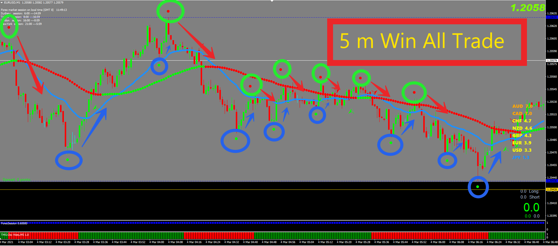Daily Price Action 100% Profitable 5m Binary Indicator Pack