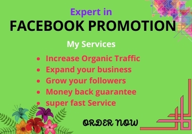 I will promote your Facebook business page or product with SEO optimize to get organic customer