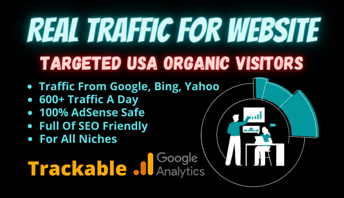 Website Traffic Software Targeted USA Real Visitors