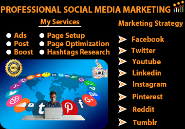 I will be your a professional digital marketing and social media manager