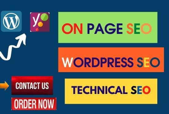 I will do onpage SEO and wordpress website ranking