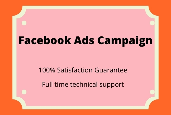 I will setup professional facebook and instagram ads campaign
