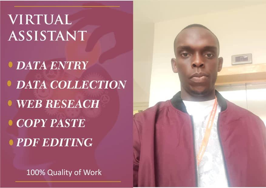 I will handle your data entry jobs in a timely fashion and prescribed format